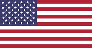 De Verenigde Staten vlag icon - country flags